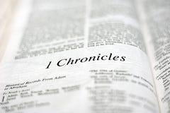 Un libro delle cronache 1 Immagine Stock Libera da Diritti