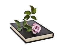Un libro y una rosa. Fotos de archivo libres de regalías