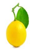 Un limone isolato su bianco Immagine Stock Libera da Diritti