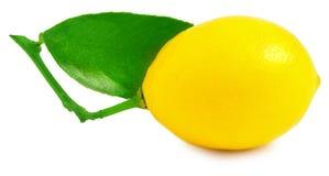 Un limone su bianco Fotografia Stock