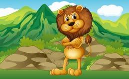 Un lion avec un Mountain View au sien de retour illustration stock