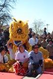 Un lion jaune dans Chinatown Images libres de droits