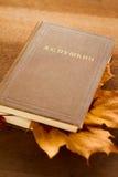 Un livre et lames d'érable Image stock