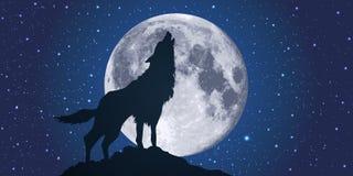 Un lobo que grita en la noche, en el claro de luna ilustración del vector