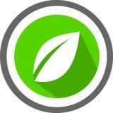 Un logo e un modello della foglia Fotografia Stock Libera da Diritti