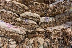 Un lotto di trasporto del lavoratore del tabacco dei tabacchi fuori di Dacca, Vatara, manikganj, Bangladesh Fotografia Stock Libera da Diritti