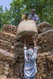 Un lotto di trasporto del lavoratore del tabacco dei tabacchi fuori di Dacca, Vatara, manikganj, Bangladesh Fotografie Stock Libere da Diritti