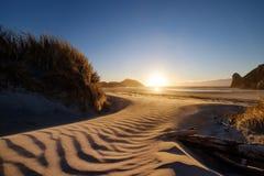 Un lugar maravilloso a visitar en Nueva Zelanda Una playa asombrosa alcanzada a través de arbustos del paseo y de la duna de aren libre illustration