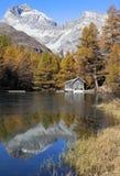 Un lugar para relajar - el lago Palpuogna Fotos de archivo
