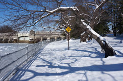 Un lugar reservado en invierno Imagen de archivo libre de regalías