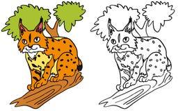 Un lynx silencieux sur un arbre Photographie stock libre de droits