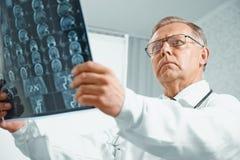 Un más viejo doctor examina imagen de MRI Imagenes de archivo