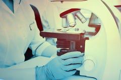 Un médico o un científico examina bacterias en un microscopio imagen de archivo