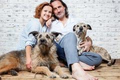 Un ménage marié heureux avec leurs chiens, un portrait de graine, amour, c Image libre de droits