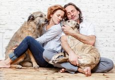 Un ménage marié heureux avec leurs chiens, un portrait de graine, amour, c Images stock