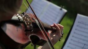 Un músico de sexo femenino que toca un violín en una orquesta almacen de video