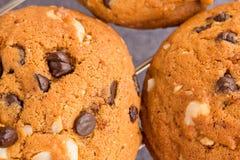 Un macro colpo di due biscotti di pepita di cioccolato, fuoco selettivo, v superiore Immagini Stock