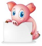 Un maiale che tiene un contrassegno vuoto Fotografia Stock Libera da Diritti
