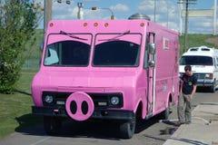 Un maiale rosa in modo divertente che intraprende l'acqua Immagini Stock Libere da Diritti