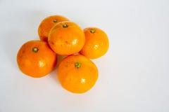 Un mandarino Immagini Stock