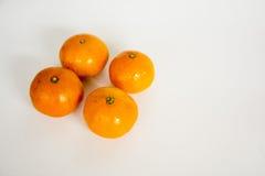 Un mandarino Fotografia Stock