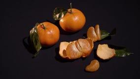 Un mandarino di due agrumi con i leafes su fondo nero archivi video