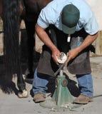 Un maniscalco che sistema uno zoccolo del cavallo Fotografie Stock Libere da Diritti