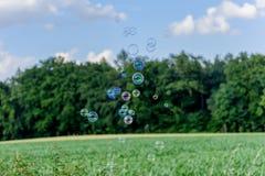 Un manojo de burbujas de jabón brillantes mágicas que vuelan sobre un campo de maíz delante de una madera Foto de archivo