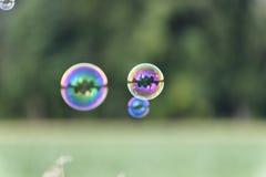Un manojo de burbujas de jabón brillantes mágicas que vuelan sobre un campo de maíz delante de una madera Fotografía de archivo