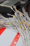 Un manojo de cables grises de la red se cierra para arriba. Fotografía de archivo libre de regalías