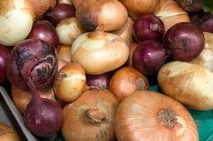 Un manojo de cebollas en la tabla en el mercado Foto de archivo libre de regalías