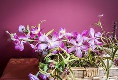 Un manojo de flores artificiales de la orquídea Fotografía de archivo