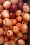 Un manojo de manzanas rojas imagen de archivo