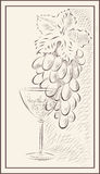 Un manojo de uvas y de un vidrio de vino Foto de archivo