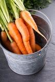 Un manojo de zanahorias frescas en cubo de la lata fotos de archivo