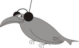 Mante della musica del corvo Fotografia Stock Libera da Diritti