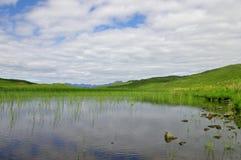 Un marais écossais Image stock
