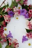 Un marco bonito de la primavera Fotografía de archivo libre de regalías