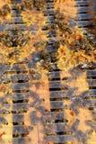 Un marco de la colmena cubierto con las abejas ocupadas Imagen de archivo libre de regalías
