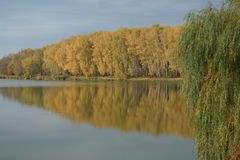 Un matin tranquille d'automne par la rivière Photographie stock libre de droits