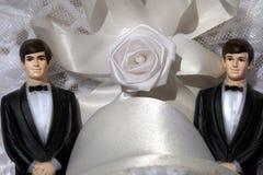 Un matrimonio gay dei due sposi Fotografia Stock