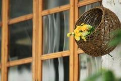 Un mazzo dei fiori in un canestro che appende sulla parete fotografia stock