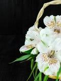 Un mazzo dei fiori di alstroemeria Primo piano Immagine Stock