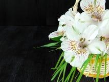 Un mazzo dei fiori di alstroemeria Primo piano Immagini Stock