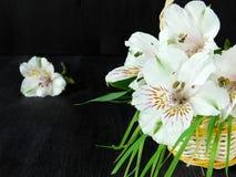 Un mazzo dei fiori di alstroemeria Primo piano Immagine Stock Libera da Diritti