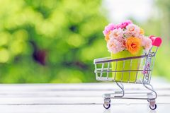 Un mazzo dei fiori rosa del muschio in un mini secchio verde su di legno Immagine Stock