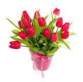 Un mazzo dei tulipani rossi fotografia stock