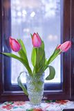 Un mazzo dei tulipani in un vaso dalla finestra fotografia stock libera da diritti