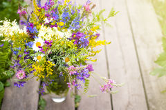 Un mazzo dei wildflowers Immagini Stock