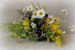 Un mazzo del giacimento di fiori Fotografia Stock Libera da Diritti